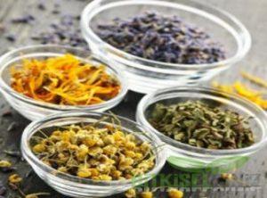 Zona Hastalığı ve Bitkisel Çözümler