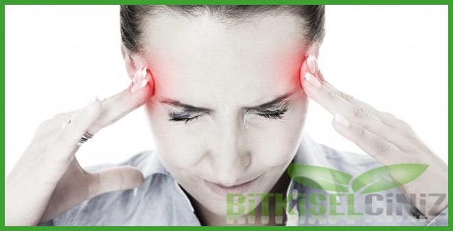 Baş Ağrısı ve Bitkisel Tedavi Yöntemleri