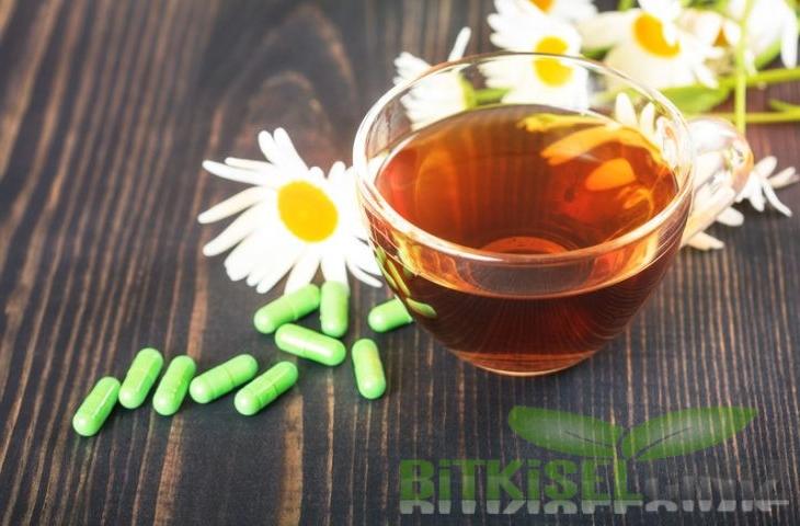 Antiviral Etkili Bitkisel Reçete