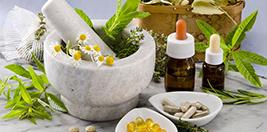 Bitkisel Sağlık